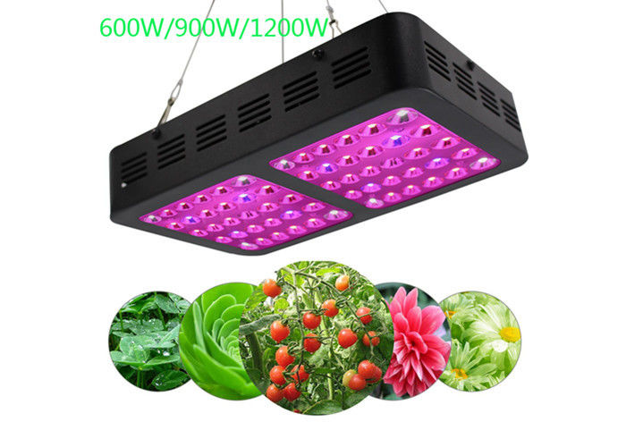 Mirrors Bright LED Indoor Grow Lights 1200 Watt 50/60 Hz 300×195×60 Mm